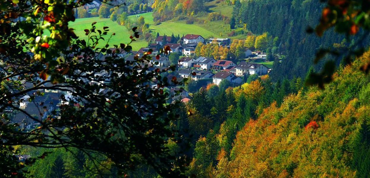 צבעי הסתיו על הדנובה