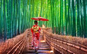 יפן - איים של יופי</a>