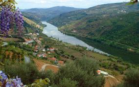 נהר הזהב של פורטוגל