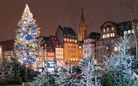 שוקי חג המולד של הריין