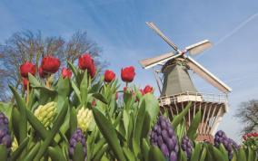 אביב בשדות הטוליפים - שייט בהולנד ובלגיה