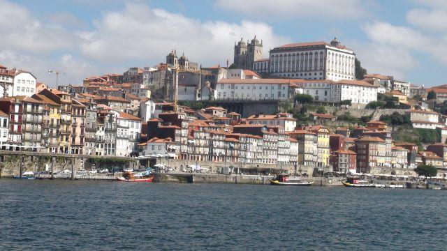 תמונת גלריה אירית ואברהם פורטוגל